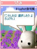 usami_575.jpg